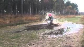 Fun in the Forrest 2 Oset Bike