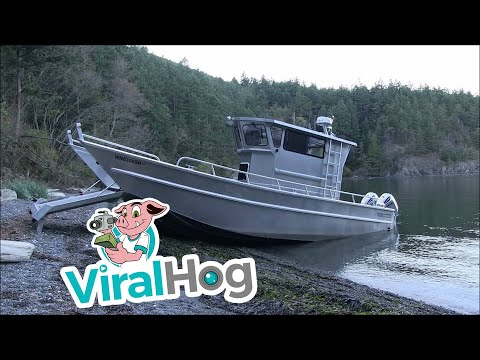 Amazing Boat Walks On The Shore || ViralHog