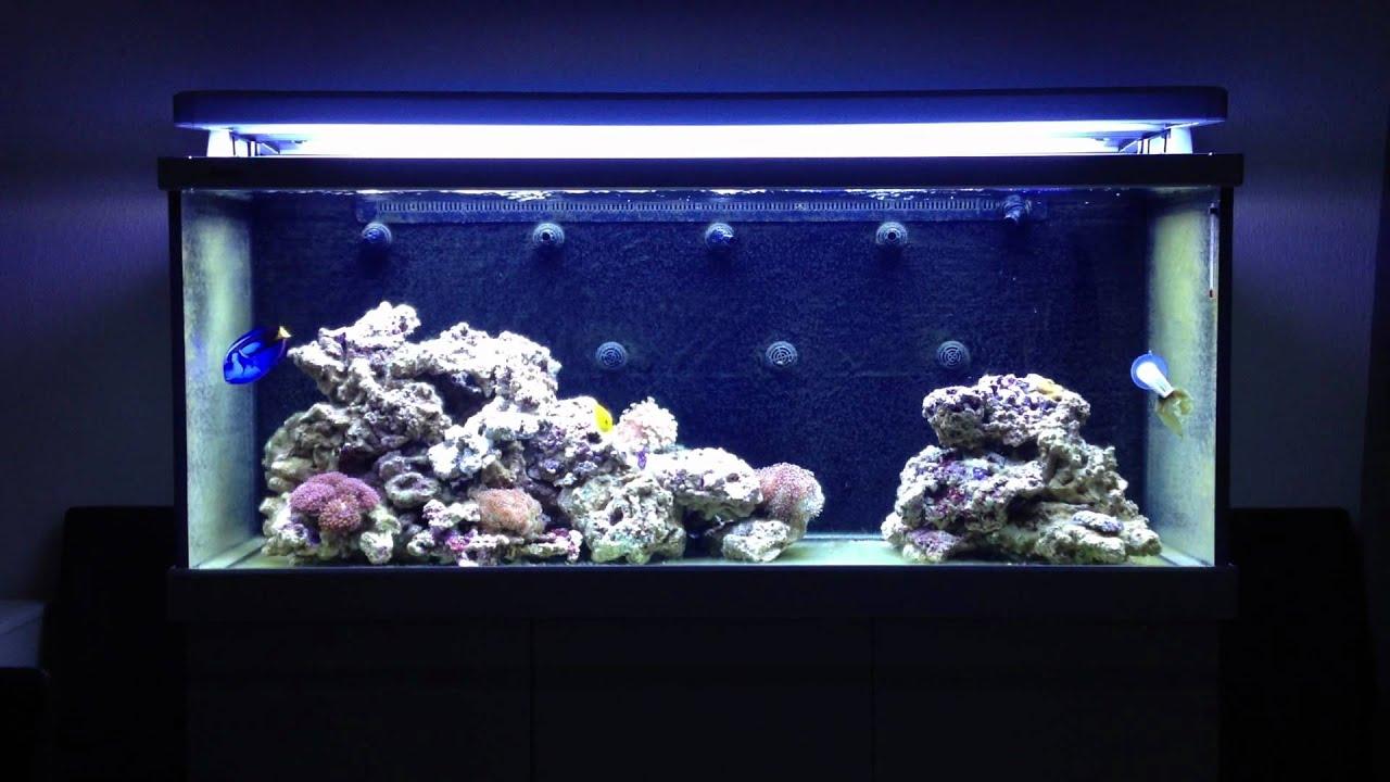Red Sea Salt, bag (25Kg) | Red Sea |Marine Aquatics.eu