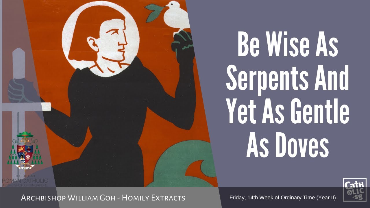 Be Wise As Serpents And Yet As Gentle As Doves - Homily by Archbishop William Goh (10 July 2020)