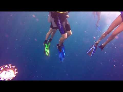 Grand Cayman dive - Lemon Drop wall Hilights- my deepest dive