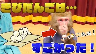 【リアル桃太郎】現代のお猿さんに「きびだんご」をあげてみたら衝撃の効果が…!