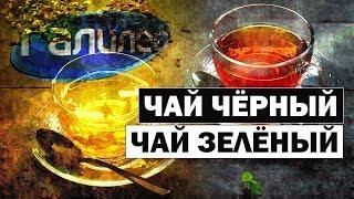 Галилео | Чем отличается черный чай от зелёного? ☕