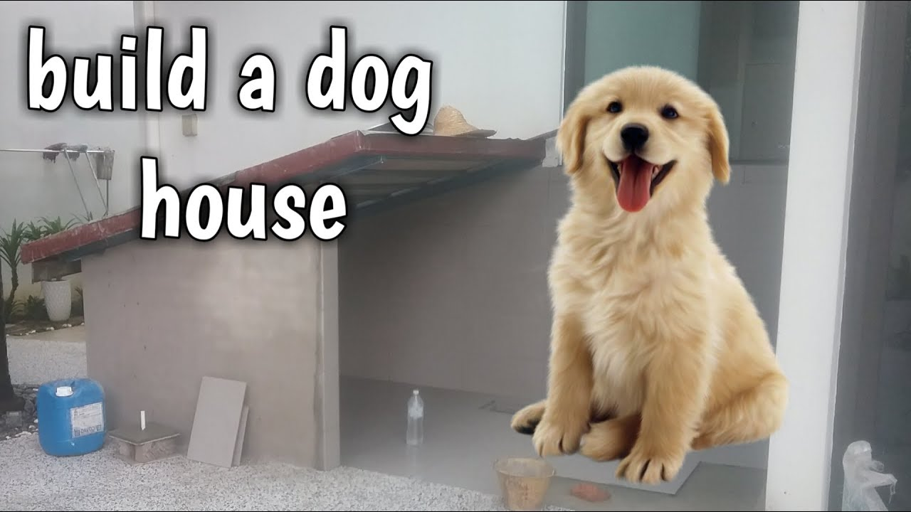 Cara Membuat Kandang Anjing Kayu - Kandang 1