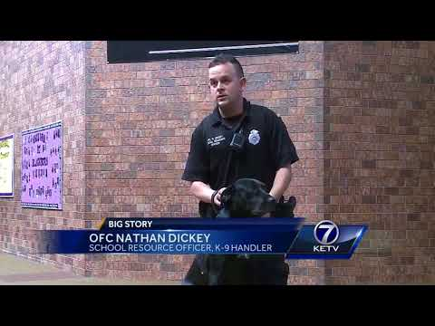 Omaha Public Schools' first drug-detection dog works full time