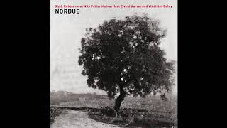Sly & Robbie meet Nils Petter Molvær - White Scarf in the Mist