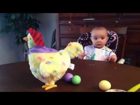 Малыш в шоке от игрушечной курицы