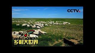 《乡村大世界》 20190622 手挽手——精准扶贫 央企在行动| CCTV农业