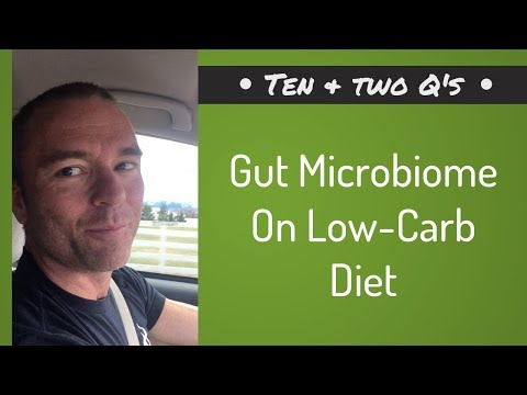 Gut Microbiome On Low Carb Diet