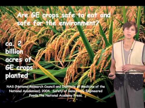 Pamela Ronald (UC Davis) Part 1: Sustainable agriculture - YouTube