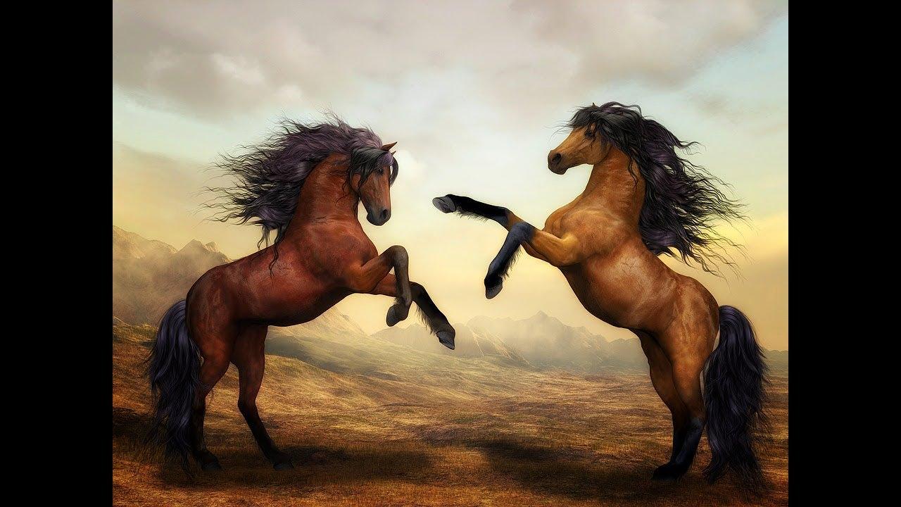 تفسير حلم رؤية حصان بني أو ابيض أو اسود أو خيل في المنام لابن سيرين Youtube