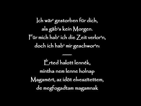 Eisbrecher - Die Hölle muss Warten (German and Hungarian lyrics) (HD)
