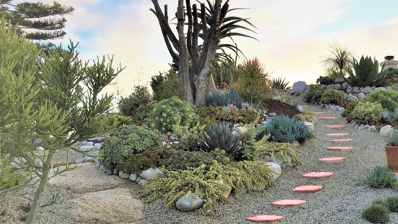 Succulent Garden Renovation Ideas - Chapter 4: Rock Garden ...