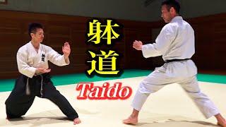 空手と躰道!果たしてどうなる? Karate and Taido, what happened? English subtitles