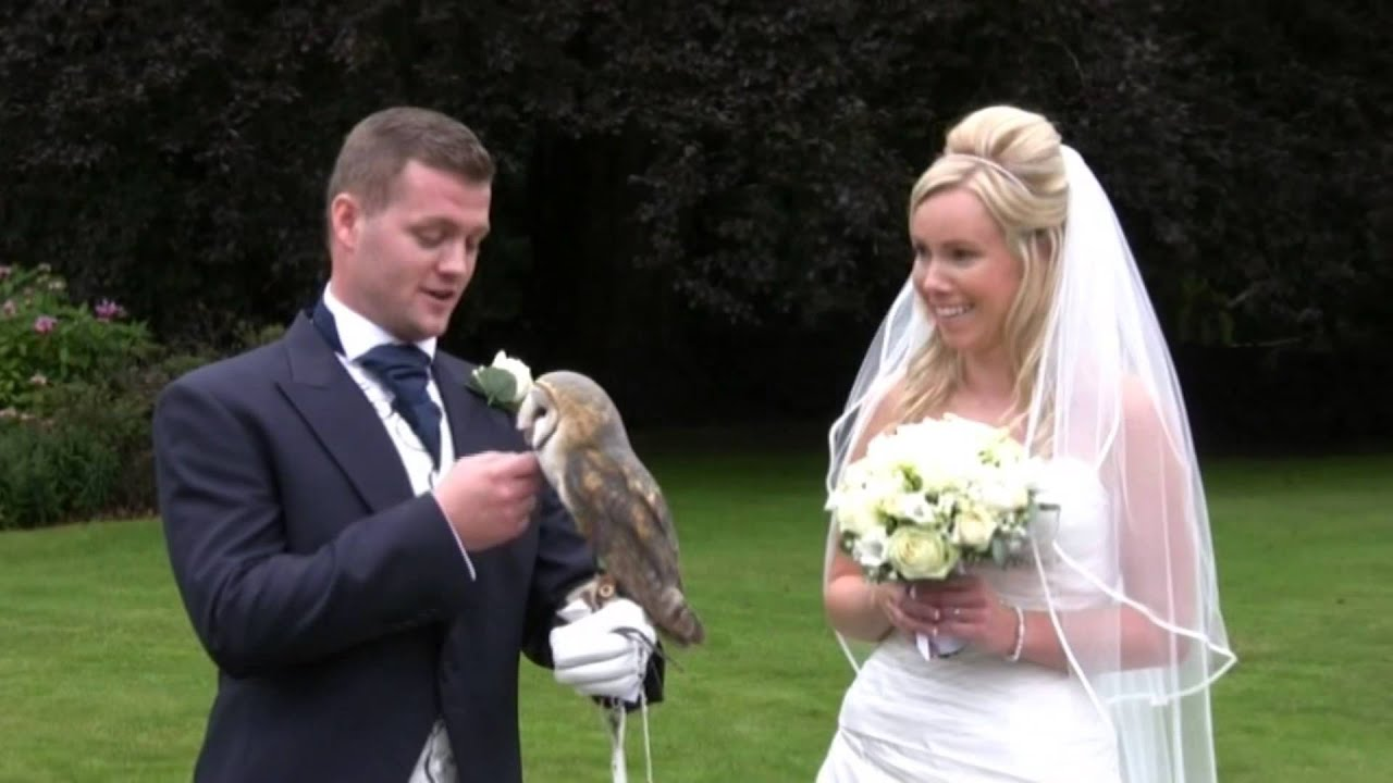 Celtic Owl Ring Bearer YouTube