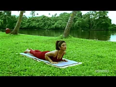 total-body-yoga-40-mins-full-body-yoga-asanas-shilpa's-yoga-youtube-360p