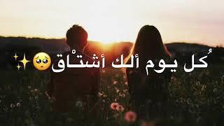 انت حبيبي ونصفي الثاني 😍💋 - سيف نبيل - اغاني للعشاق 2019