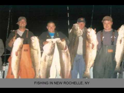 Fishing New Rochelle NY Sound Bound Fishing Charters