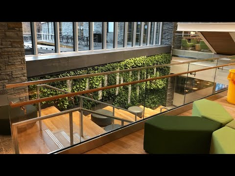 the-universities-at-shady-grove-biomedical-sciences-&-engineering-living-wall---featured-project