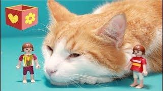 Cute cat   Bellboxes   Part Seven   Simba playmobil cat   7  