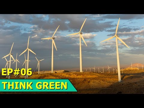 Argentina Wind Farm | Celebrity Fundraiser | Kuwait Flamingos | Think Green : Episode 06