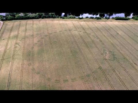 Drought reveals ancient Stonehenge-like monument in Ireland