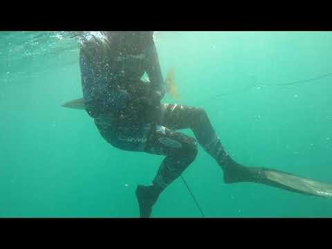 UAE Diving Western Region Ep 5