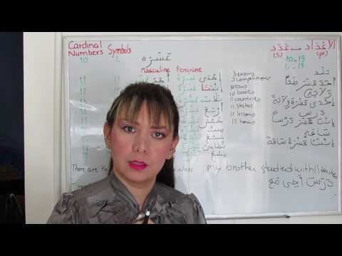 Learn Arabic Numbers - Counting in Arabic (10-19) الأعداد الأصلية - Lesson 19