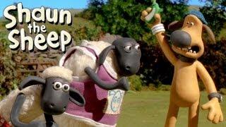 Shaun het Schaap - hordenlopen