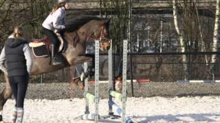 Springles Renate & Desteney
