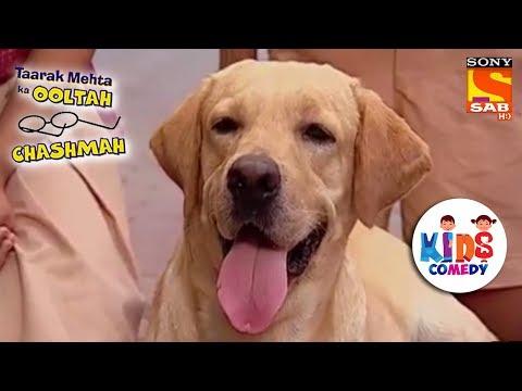 Tapu Sena's New Buddy | Tapu Sena Special | Taarak Mehta Ka Ooltah Chashmah