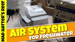 DIY Air System for my Freshwater Aquariums