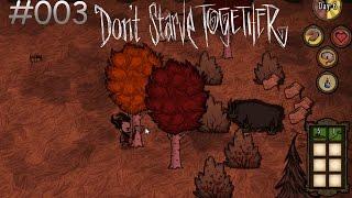 DON'T STARVE TOGETHER #003: Alles für das Lager! [HD+] | Let's Play Don't Starve