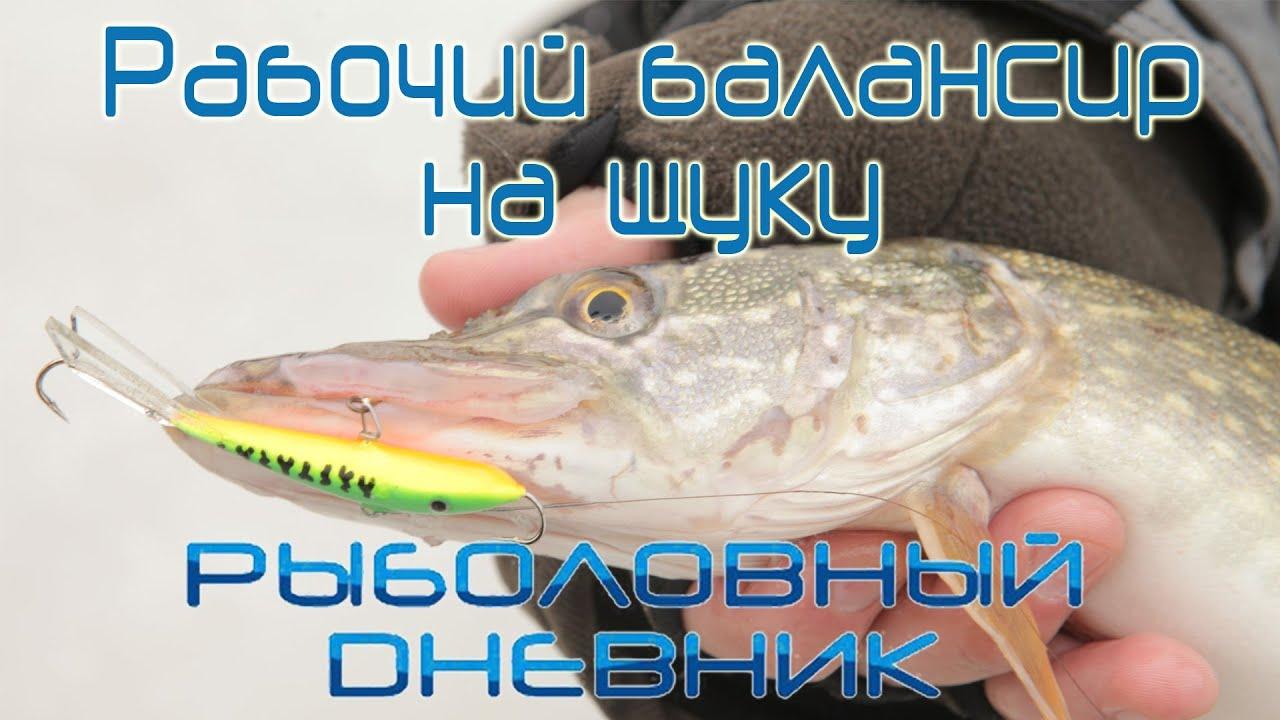 приманка для рыбы своими руками