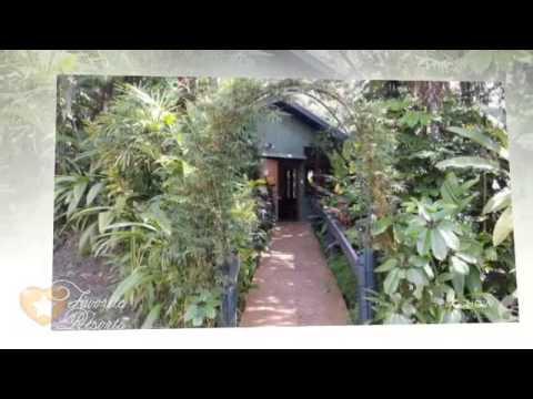 Colo-I-Suva Rainforest Eco Resort - Fiji Suva