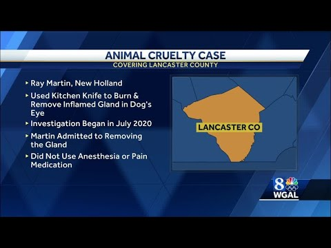 Breeder charged with animal cruelty, torturing dog