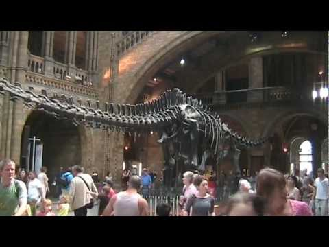 """Natural History Museum"", Dinosaur Central, South Kensington, London"