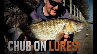 Micro Lure Fishing - Insanely hard Fishing !BIG CHUB!