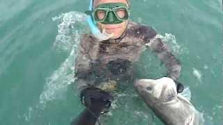 pesca sub BA Spigolona quasi 6 kili nel torbido delle onde