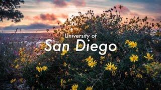 Video Ranked Most Beautiful Campus?? download MP3, 3GP, MP4, WEBM, AVI, FLV Juni 2018