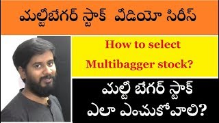 how to find multibagger stoks ఎంచుకోవడం ఎలా by trading marathon