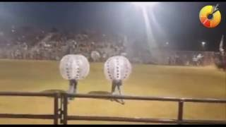 Bulls playing HUGE ball on RODEO