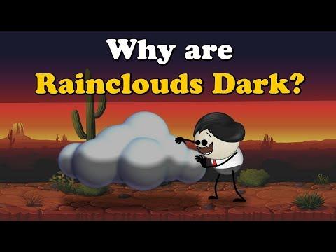 Why are Rainclouds Dark? | #aumsum #kids #science
