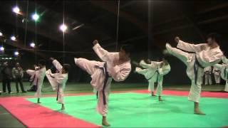 esibizione Sound Karate Aspria 2014