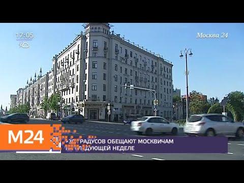 Москвичам обещают 30-градусную жару на следующей неделе - Москва 24