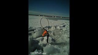 Сбежим из Города Рыбалка на Яузском водохранилище февраль 2020 г