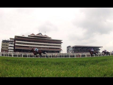 Ride Newbury with John Reid | Channel 4 Racing