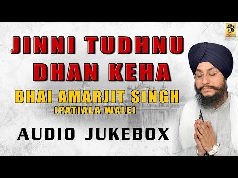 Best Collection of Bhai Amarjit Singh | Patiale wale | Non Stop Kirtan | Gurbani | Mp3