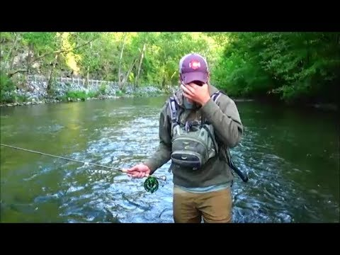 Snapped By Monster Brown Trout- Fly Fishing PA Sept. 3, 2017