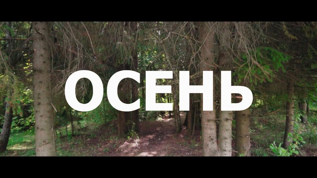Лес, осень, природа в деревне в Подмосковье. - YouTube